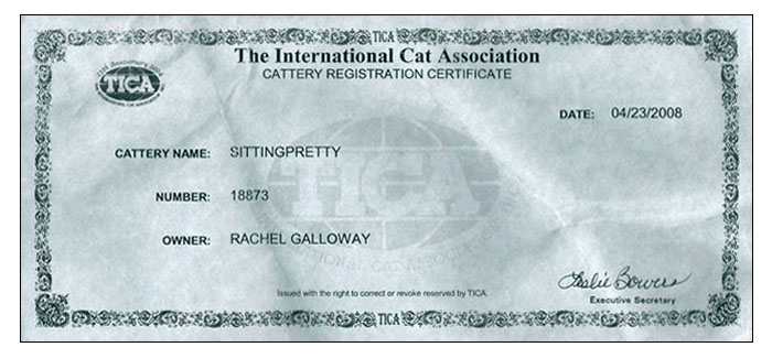 Sittingpretty Tica Cattery Registration