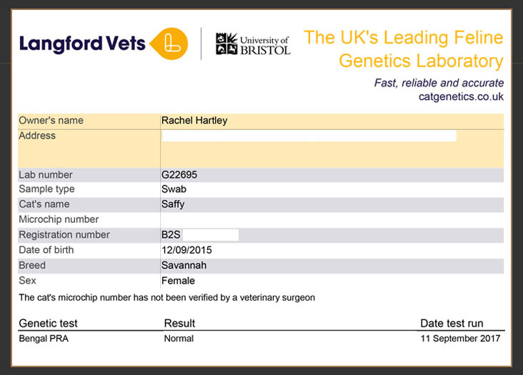 Langford veterinary services genetic test results